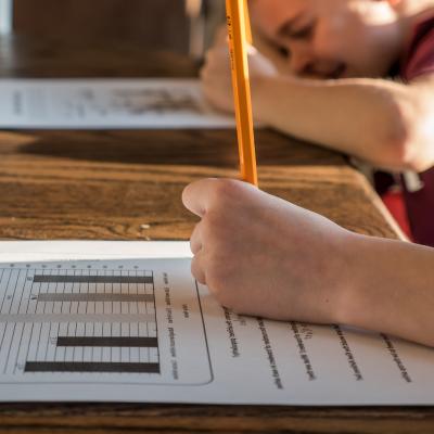 Students doing homework for school